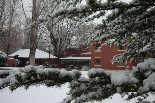 Vista del Jardín nevado